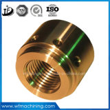 Machining Aluminum/Brass/Stainless Steel/Metal Part, Auto Parts, Car Parts, Hardware Lathe Machine Machining Parts in Machine Shop