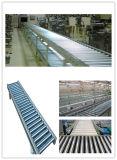 Logistics Roller Conveyor Line 3