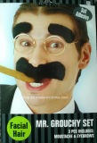 Mr. Grouchy Set/Plush Adhesive Moutache and Eyebrows (BA011)