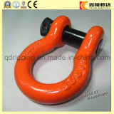 Us Hot Dipped Galvanized Bolt Type Forged D Shackle Price