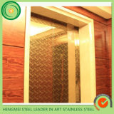 Supplier of Elevator Stainless Steel Price in Saudi Arabia Mirror Etched Color Stainless Steel Sheet