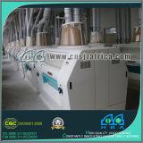 flour mills turnkey project