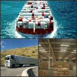 Ocean Freight Forwarder in Istanbul Turkey
