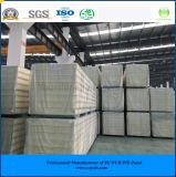 ISO, SGS 200mm Plugging Sandwich Panel for Cool Room/ Cold Room/ Freezer