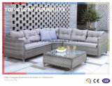 Garden Patio Outdoor PE Rattan Sofa Sets (TG-043)