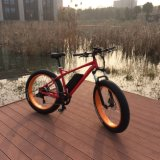 26inch 4.0 MTB Fat Tyre Electric Bike