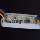 9LED, Waterproof Super Flux LED Module