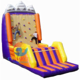 Outdoor Rock Inflatable Climbing Wall with Ce Blower