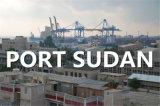Qingdao to Port Sudan Ocean Freight by Ocean FCL