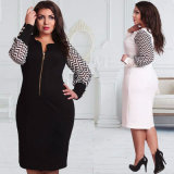 Fashion Plus Size Ball Gowns Evening Zip Dresses (A904)