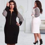 Fashion Plus Size Women Long Sleeve Chiffon Zip Dress (A904)