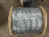 high Quality 6*12+7FC-6mm Galvanized Steel Wire Rope