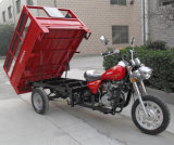 250cc Disc Brake Heavy Adult Gas Cargo	Trike Motorcycle (SY250ZH-C4)