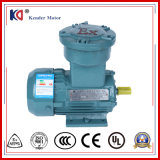 AC Electric Motors 0.75kw Explosion Proof Three-Phase Motor