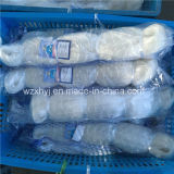 0.35mm 2 1/4 Mesh Size White Not Slip Knots Monofilament Fishing Net