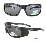Brand Stock Sunglasses Eyewear Supplier in China
