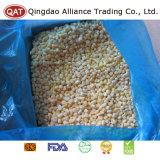 Frozen Sweet Corn Kernels for Exporting