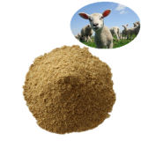 Soybean Meal 46% Feed Grade Super Supplier