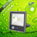 10W 30W Floodlight with RoHS CE SAA UL