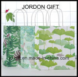 Custom Colorful Printing Paper Bags with Twisted Paper Handles