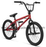 20 Inch Hi-Ten Frame BMX Bike/ Bicicleta/ Dirt Jump BMX/ Sy-Fs20100
