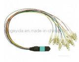 MPO-LC Connector Fiber Patch Cord