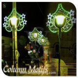 Outdoor Pole Lights Christmas 2D LED Motif Light