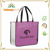 Friendly Non Woven Fabric Non Woven Bag for Shopping