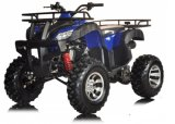 High Quality Classic ATV Quads 4 Wheelers 150cc 200cc (HD200ST-Q)