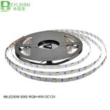 96LEDs/M LED Strip Light 5050 SMD RGB/Ww DC12V IP65