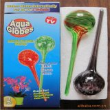 Flower Bulbes, Watering Globes for Indoor Christmas Decoration