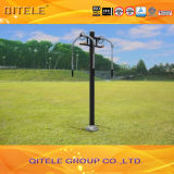 Outdoor&Indoor Gym Fitness Playground Equipment (QTL-3002)