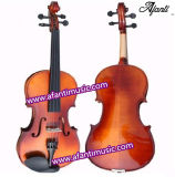 Popular Model, Solid Wood, Glossy Paint Viola (AVO-01)