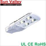 100W LED Street Light Bridgelux COB UL RoHS IP66