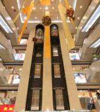 Commercial Observation Elevator
