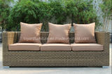 Outdoor Rattan Sofa Set/Garden Wicker Furniture (F851)