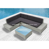 Rattan Sofa for Outdoor with Aluminum Pipe (8401) SGS