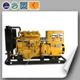 Mini Power Natural Gas Genset with CE and ISO Certificate (20KW)