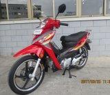 New Classic Cub 110cc Motorcycle