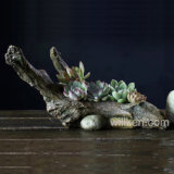 Wholesale Creative Mini Handicrafts Decoration Succulent Plants Resin Roots Pot