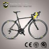 China Shenzhen Shimano Sora 18 Speed Carbon Fiber Road Bike