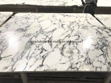Chinese Arabascata White Marble Slab for Bathroom Countertop and Tile