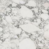 White/Beige/Cream/Light Grey Marble Tiles/Slabs Italy Arabescato Corchia
