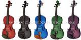 Violin / Colour Violin / Musical Instruments