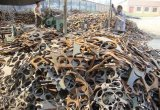 High Purity Iron Scrap
