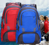Sports Hiking Backpack School Bag Laptop Bag Backpack Bag Yf-Pb0109