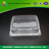 New Style Blister Packaging for Fruit Disposable Container