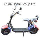 1000W Electric Motorcycle with 60V/30ah F/R Suspension, 2 Seats