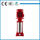 DLB Stainless Steel Vertical Multistage Pump with Good Quality