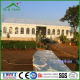 Factory Beautiful Cheap Event Tent